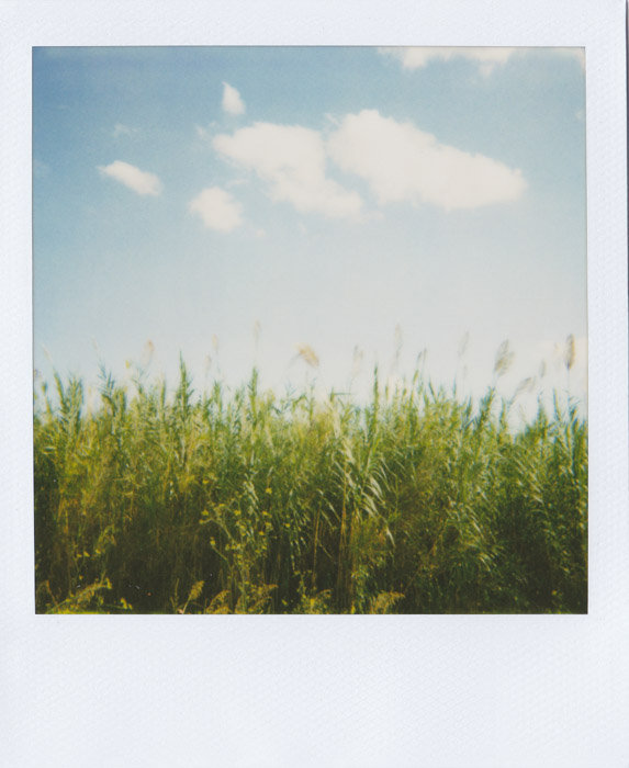 my-polaroids-12